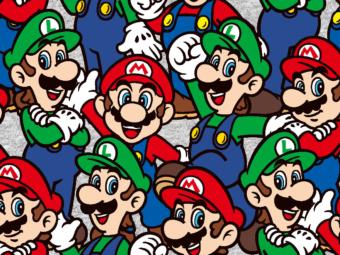 CTN_Mario Luigi Packed