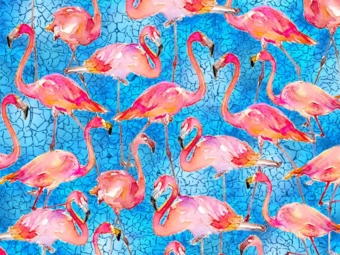 Flamingos_in_Paradise-10292