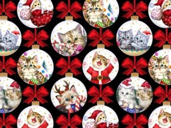 kitten christmas3